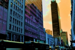 NEW-YORK-08.08.2019.0003-elab